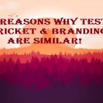 6 reasons why Test Cricket & Branding are similar!